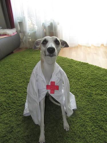 thaya nurse