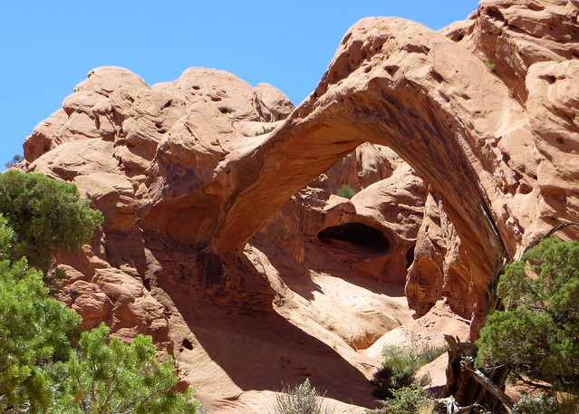 Capitol Reef - Upper Muley Twist 083