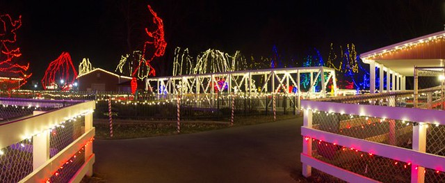 Kiwanis Holiday Lights