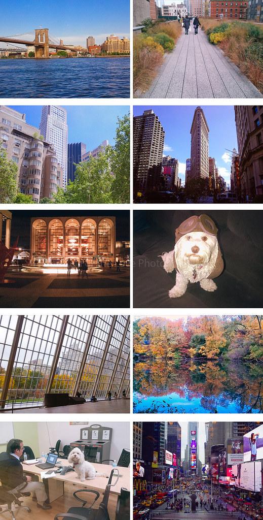 NYC Life 1