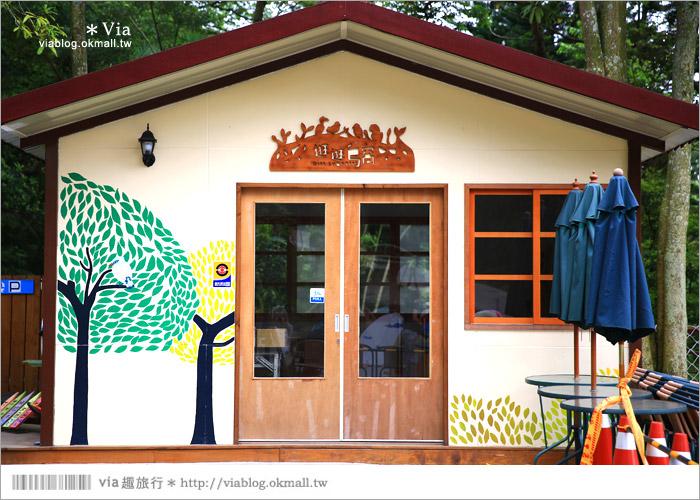 【新竹景點推薦】森林鳥花園~親子旅遊的好去處!在森林裡鳥兒與孩子們的樂園20