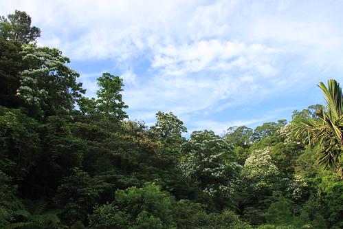 第一個環境公益信託案例─自然谷環境教育基地。