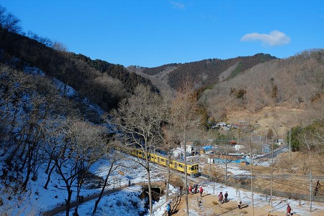 Seibu Local Train