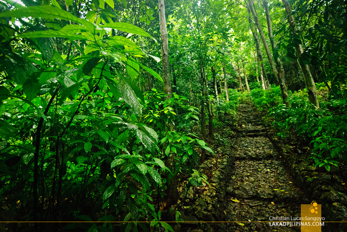 Ascent to Aglipay Cave Mouth in Quirino Province