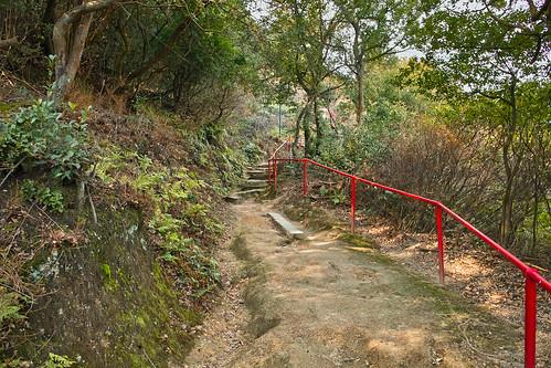 臥龍稲荷神社 #3