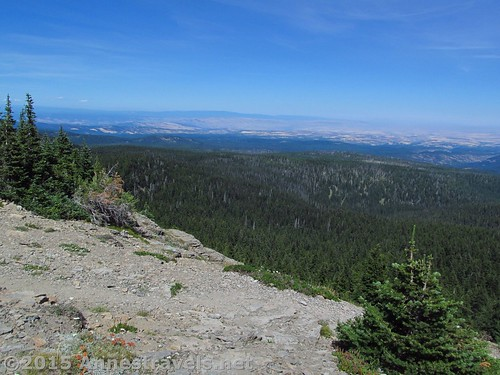 Views from Lookout Mountain toward the plains, Mount Hood National Forest, Oregon