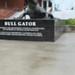 Aggie Ring at Bull Gator Statue