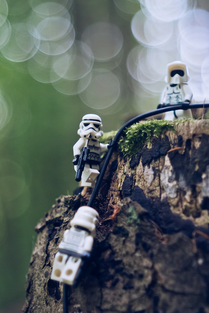 Imperial forces on Endor
