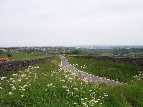 View from Viewpoint on Greenhouse Lane