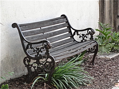 weathered bench
