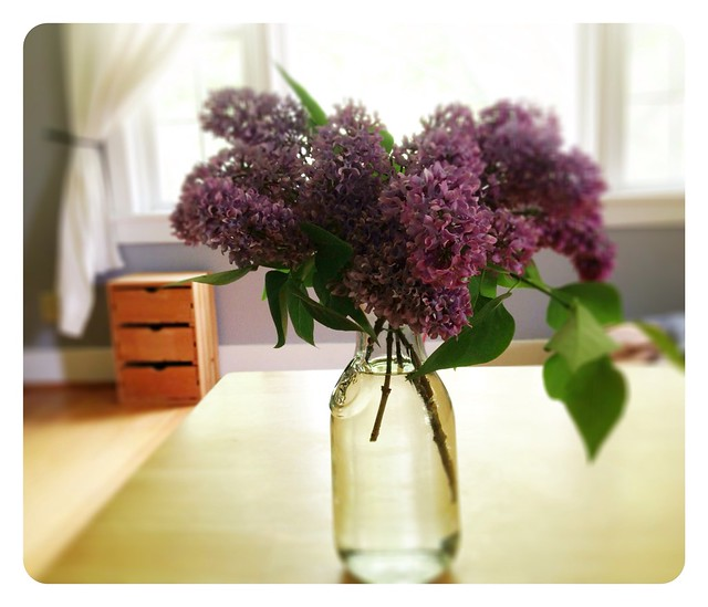 Nothing Like Lilacs in Spring
