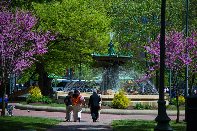 Spring in Burnside Park