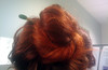 20120508 - Carolyn's attempt at a bun - (by Carolyn) - 15.42.35