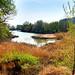 Navarra wetlands (Jose Ardaiz)