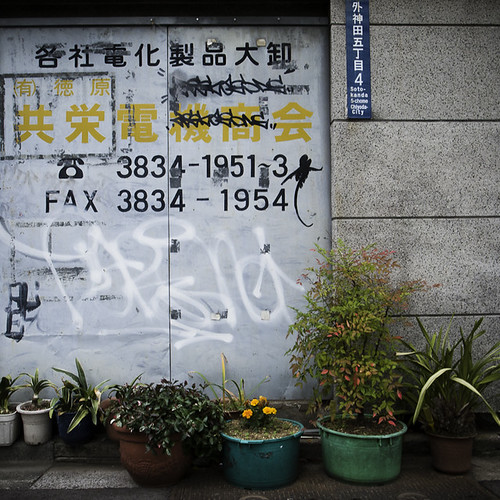 Lined Up Street Garden with Tags and Text