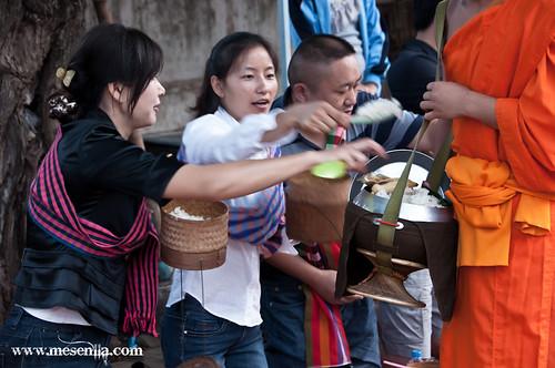 Laosians oferin menjar als monjos