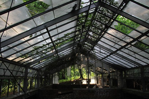 Mostly Intact Glass Roof