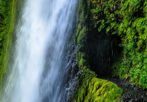 green oregon waterfall unitedstates fav50 path fav20 hike trail fav30 tunnelfalls eaglecreektrail cascadelocks mthoodnationalforest fav10 fav40 fav60 fav90 fav80 fav70 waterfallswednesday