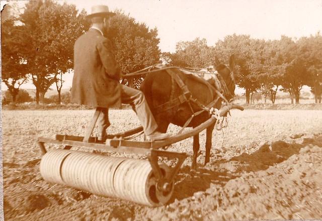 Demostración de un rodillo en la Feria de Maquinaria Agrícola en la Vega Baja hacia 1910. Fotografía de los Sucesores de Compañy © Cámara Agraria de Toledo, Junta de Comunidades de Castilla-La Mancha