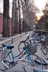 Beijing morning - bicylcles