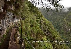 Levada do Caldeirão Verde (Santana, Madeira)