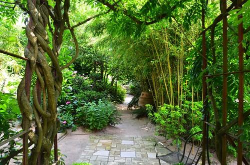le jardin agapanthe belle belle belle normandie. Black Bedroom Furniture Sets. Home Design Ideas