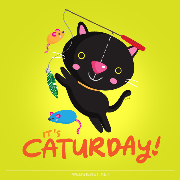 Caturday drawing illustration pusspin