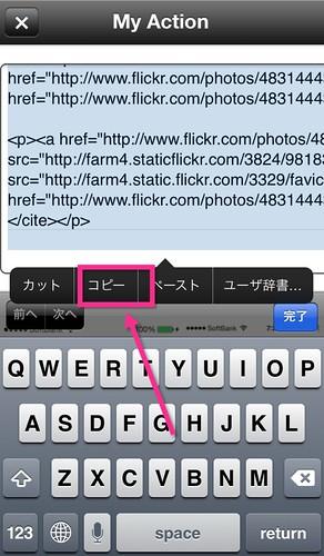 Flickr画像-6