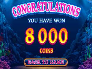 Dolphin Quest Bonus Total Prize
