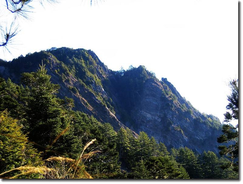 羊頭山(From 登山步道)