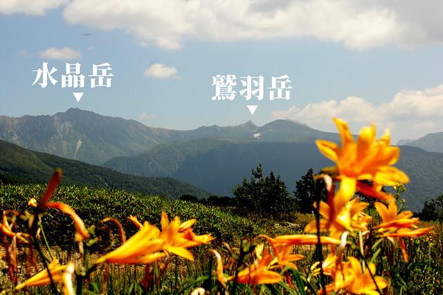 雲ノ平_41