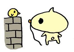塀の上の鳥と見つめ合うむー