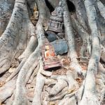 Image of Wat Si Sawai near Ban Na. thailand 2013 asia southeastasia sukhothai historicalpark watsisawai oldsukhothai december ประเทศไทย ราชอาณาจักรไทย สุโขทัย อุทยานประวัติศาสตร์สุโขทัย sukhothaimuangkao canonefs1755mmf28isusm buddha 泰国 canon450d unescoworldheritagesite