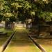 South Park Street Cemetery-32