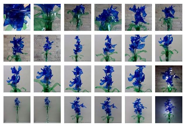 blaue blumen flores azules blue flowers recycled plastic bottles flickr photo sharing. Black Bedroom Furniture Sets. Home Design Ideas