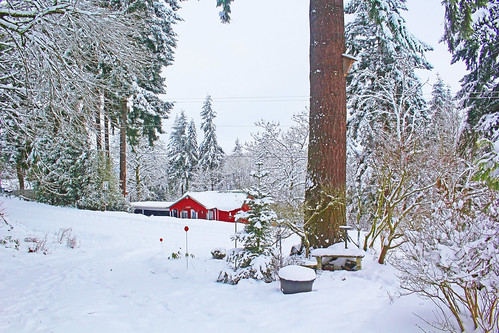 winter snow home oregon snowdays