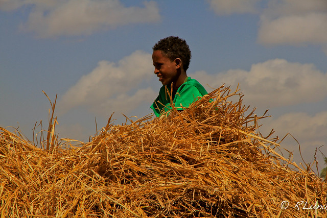 DE REGRESO A ADDIS  (Etiopía)