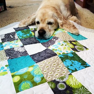 Our quilting is done on this adorable wall hanging. I have to share it with Rocky though.  #greatgrannysquared