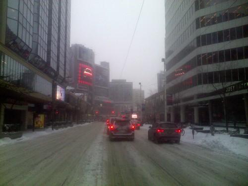 Winter snowfall, 12 March 2014 (6)