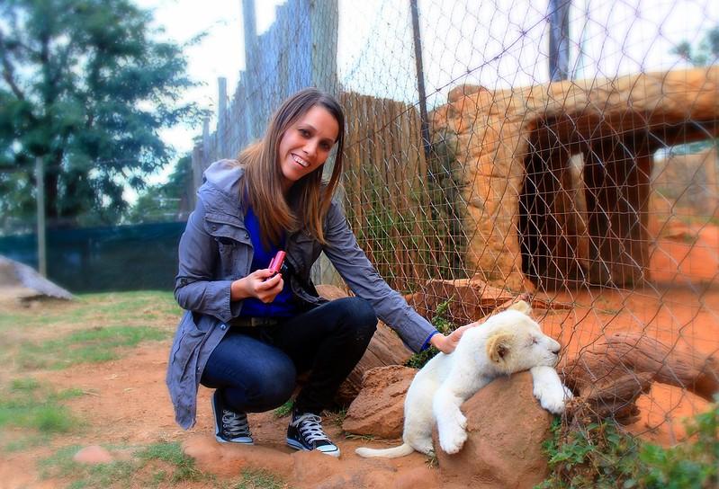 Taz and Simba