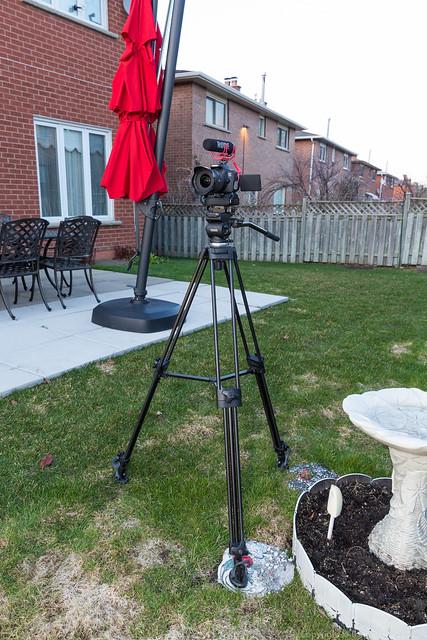 E-Image EI-7050H 75mm Fluid Head Plus E-Image AT7402B Video Tripod Body with Canon T4i & Rode VideoMic GO