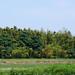 takenoaki_dsc_3474 by takao-bw
