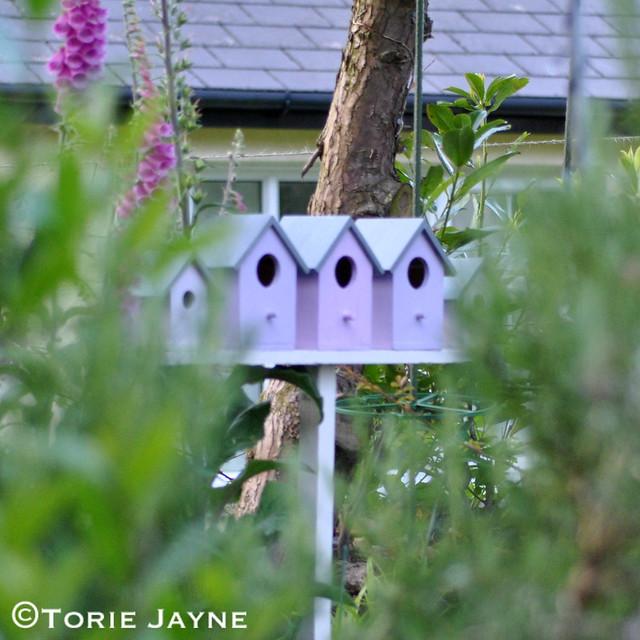 Birdhouses 11