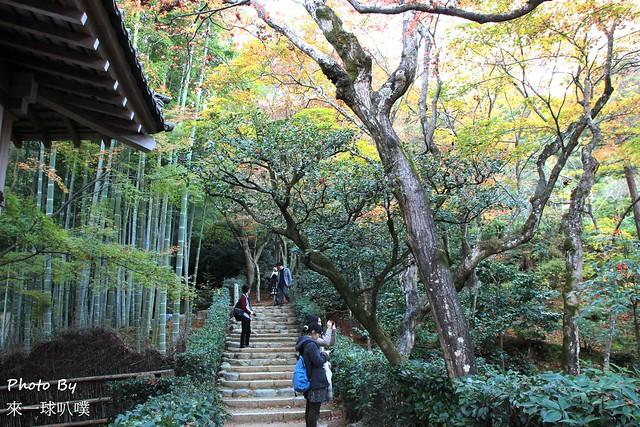 嵐山旅遊景點-常寂光寺35