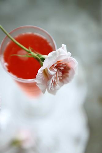 Raspberry Rose Spritzer
