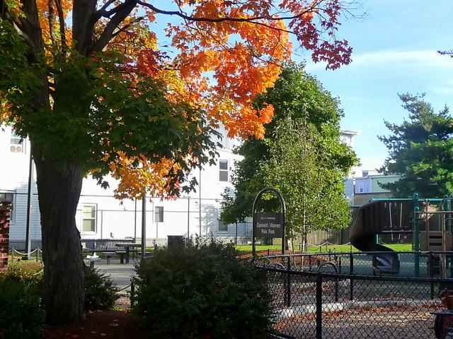 Wellington-Harrington - Gannett Warren Pals Park, Jefferson Street, Cambridge, MA