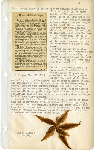 Page 66 - Orchid specimen, article on Dr. Chapin's mission