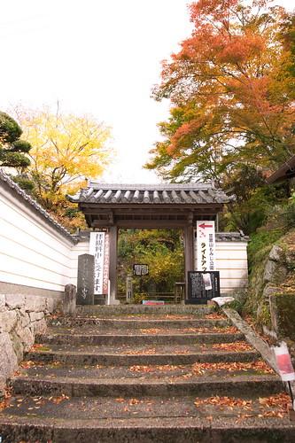【写真】2012 紅葉 : 笠置山もみじ公園/2020-05-28/IMGP6121