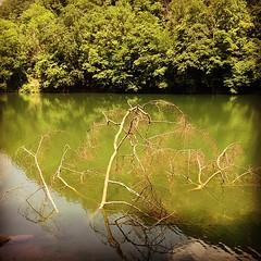 #lake #lillafured #huemore