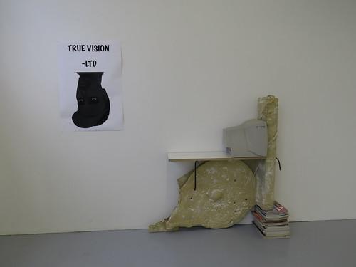 David Douard: True Vision 2